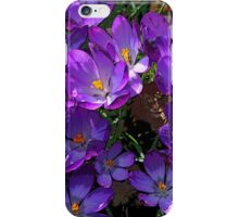 Crocus Cluster iPhone Case/Skin
