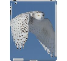 Queen of the sky iPad Case/Skin