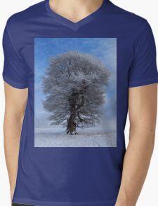The beauty of winter. Mens V-Neck T-Shirt
