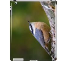 Nuthatch Bird iPad Case/Skin