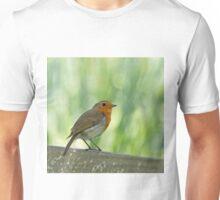 European Robin Perched Unisex T-Shirt