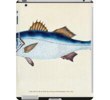 The Natural History of British Fishes Edward Donovan 1802 024 iPad Case/Skin