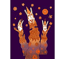 Psychedelic Rabbit Wizards  Photographic Print