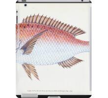 The Natural History of British Fishes Edward Donovan 1802 043 iPad Case/Skin