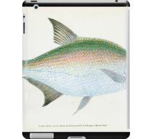 The Natural History of British Fishes Edward Donovan 1802 114 iPad Case/Skin