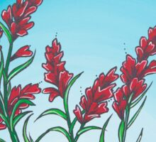 Indian Paintbrush Sticker