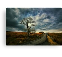 Never the Day so Dull Canvas Print