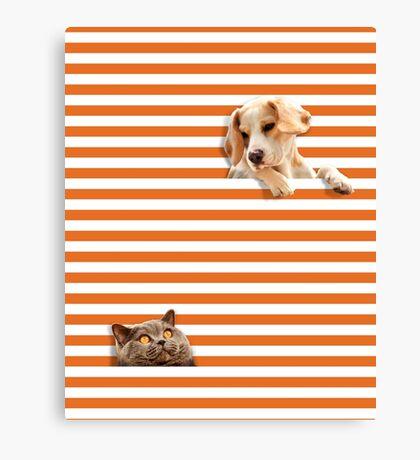 Cat vrs Dog Canvas Print
