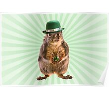 St Patricks Day Squirrel Poster