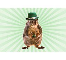 St Patricks Day Squirrel Photographic Print