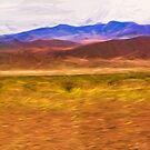 Death Valley Spring by Steve Walser