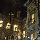 New York Night - Graceful Mansions Through the Naked Tree Branches by Georgia Mizuleva