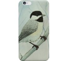 Black-capped Chickadee iPhone Case/Skin