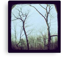 TTV - the trees (2011) Canvas Print