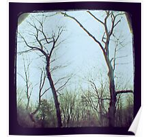 TTV - the trees (2011) Poster