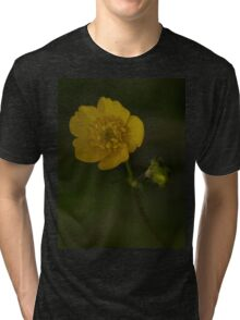 Meadow Buttercup - Burntollet Woods, County Derry Tri-blend T-Shirt