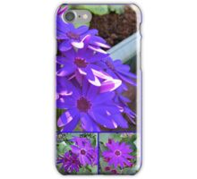 Cinerarias Dreaming -  Floral Collage in Purple and Blue iPhone Case/Skin