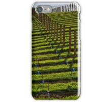 Marlborough Vineyard iPhone Case/Skin