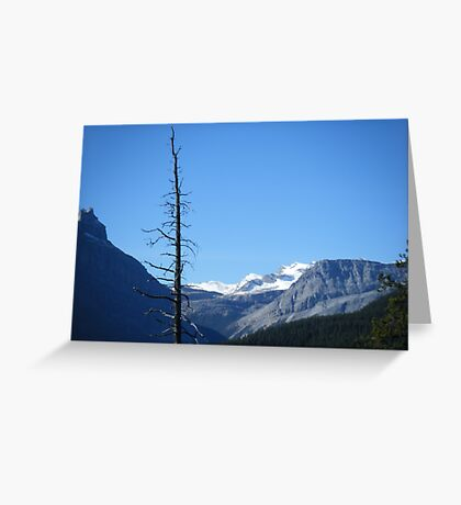 The Lonely Pine Greeting Card
