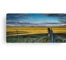 Landscape: wind turbines, kangaroos and a dry lake Canvas Print