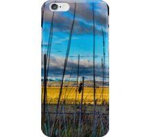 Landscape: wind turbines across a dry lake iPhone Case/Skin