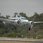 Electra Landing,Temora Airshow,Australia 2008 by muz2142