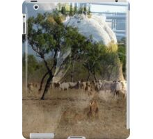Outback Reflections iPad Case/Skin