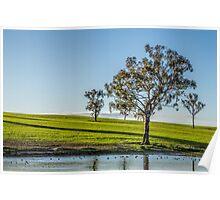 A tree scene Poster