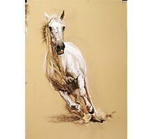 galloping Photographic Print