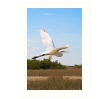 White Heron in Flight Art Print