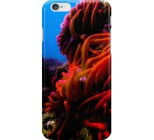 Sea Anemone  iPhone Case/Skin