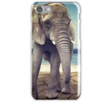Elephant by the sea iPhone Case/Skin