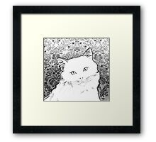Ragdoll Cat called Mia Framed Print