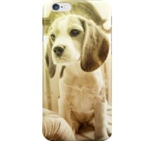 Cute Puppy iPhone Case/Skin