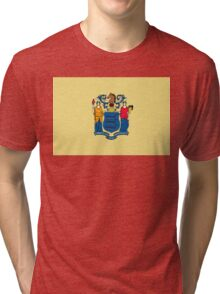 New Jersey state flag Tri-blend T-Shirt