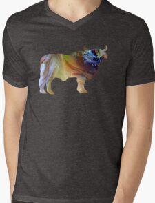 Brahman  Mens V-Neck T-Shirt
