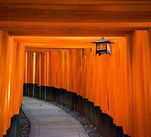 kyoto red torii gates by milena boeva