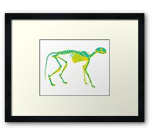 skelly - cat Framed Print