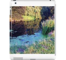 countryside view  iPad Case/Skin