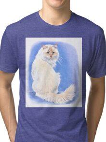 Cream point Ragdoll Tri-blend T-Shirt