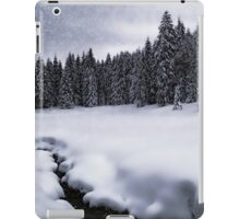 Bavarian Winter's Tale VII iPad Case/Skin