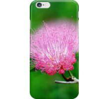Macro Nature iPhone Case/Skin