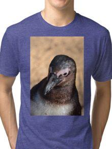 African Penguin Tri-blend T-Shirt