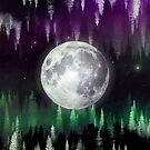 Dreaming under the northern lights by lab80