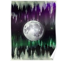 Dreaming under the northern lights Poster