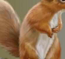 Red Squirrel  Sticker