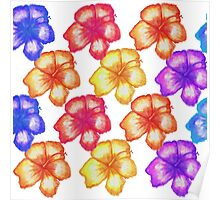 Colorful Tropical Watercolor Hibiscus Flowers Poster