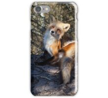 The Prince of Island Beach State Park iPhone Case/Skin