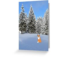 A fox in the snow. Greeting Card