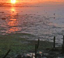 Holes Bay Sunset Sticker